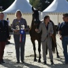 French National Bronze Champion Senior Mare Pompadour 2016